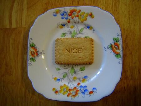 nice-biscuit